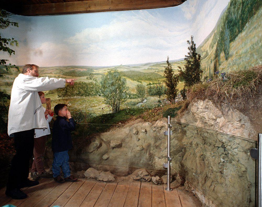 Diorama im Werther Tor: Eine nur dünne Bodenschicht bedeckt den Kalkuntergrund – darauf entwickelt sich durch andauernde Schafbeweidung der typische Magerrasen