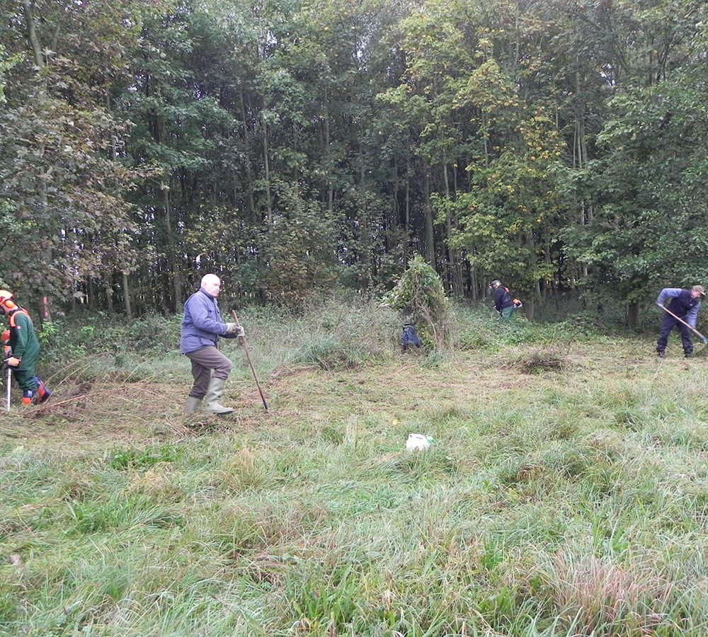 Die Randbereiche des Moors werden regelmäßig von Hand freigeschnitten, damit die inneren Flächen nicht zuwachsen.